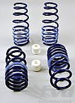 991 C2/C2S Lowering Springs H&R (-30mm) with/without PASM (not for I031option)